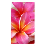 Pink Plumeria Frangipani Hawaii Flower Hawaiian Business Card Templates