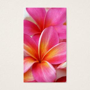 Plumeria frangipani hawaii flower business cards business card pink plumeria frangipani hawaii flower hawaiian business card reheart Images