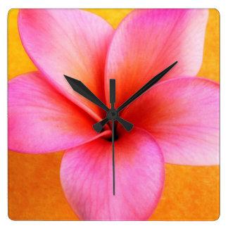 Pink Plumeria Frangipani Hawaii Flower Hawaiian Square Wall Clock
