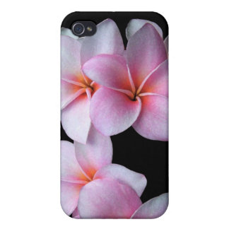Pink Plumeria iPhone Case iPhone 4 Case