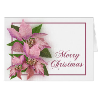 Pink Poinsetta Greeting Card