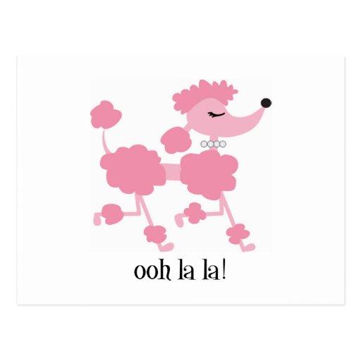 pink poodle postcards