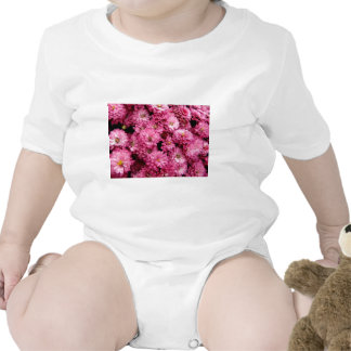 Pink Poofs T Shirts