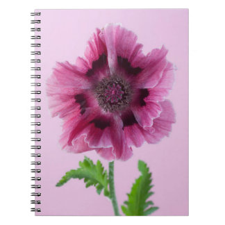 Pink Poppies Flower Nature Spring Notebook