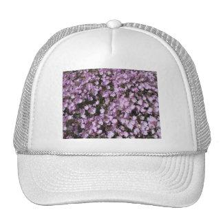 Pink Poppies Hat