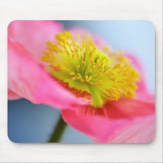 Pink Poppy Mouse Mat