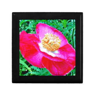 Pink Poppy Small Square Gift Box
