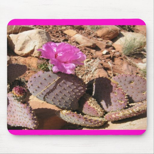 Pink Prickley Pear Cacti Mouse Pad