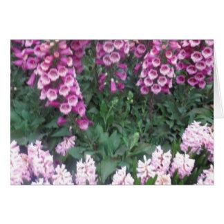 PINK Purple Flower Show: Love Sensual Romance Gift Greeting Card