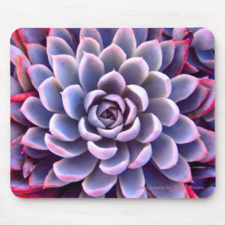 PInk & Purple Succulent Mousepad
