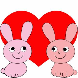 pink rabbit red heart photo cutout