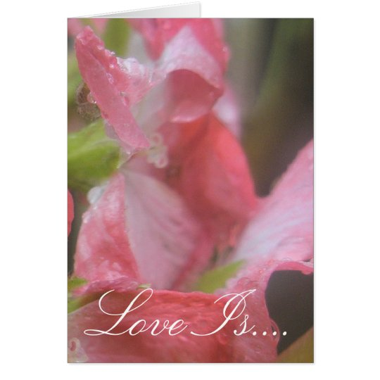 Pink Rain Card