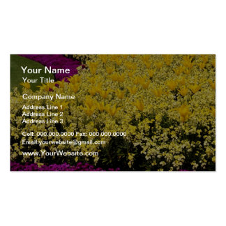 Pink Rainbow flowerbeds flowers Business Card Template