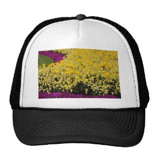 Pink Rainbow flowerbeds flowers Hat