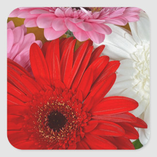 Pink, red and white gerber flowers square sticker