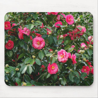 Pink & Red Camillias Mousepad