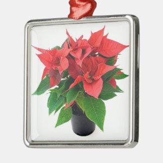Pink Red Poinsettia Square Ornament Bright Colors