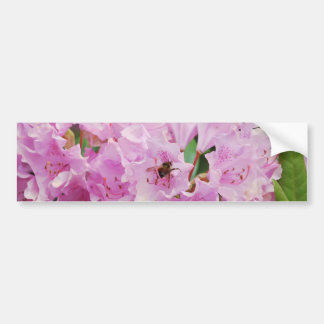 Pink Rhododendron and Bee Bumper Sticker