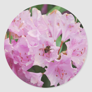 Pink Rhododendron and Bee Round Sticker