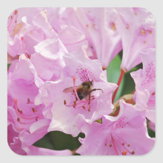 Pink Rhododendron and Bee Stickers