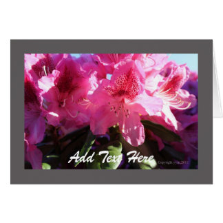 pink rhododendron flower all purpose greeting card card