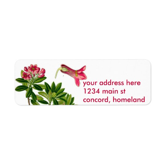 Pink rhododendron illustration return address label