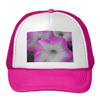 Pink rimmed petunia mesh hats