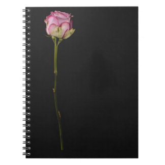 Pink rose 3 notebook