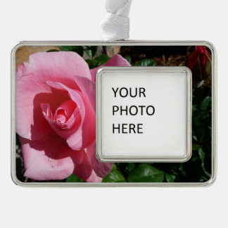 Pink Rose and Bud Silver Plated Framed Ornament