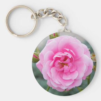 Pink rose blossom basic round button key ring