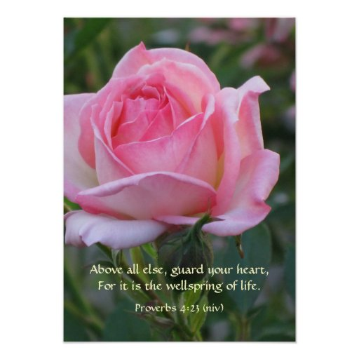 Pink Rose Bud ~ Proverbs 4:23 Poster