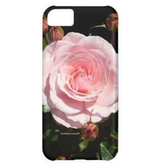 Pink Rose Buds iPhone 5C Case