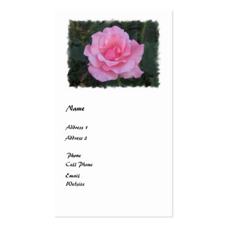 pink rose pack of standard business cards