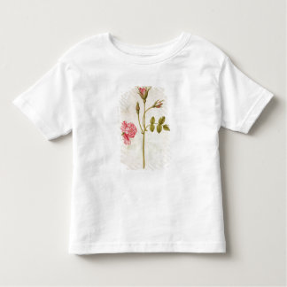 Pink Rose, c.1568 Toddler T-Shirt