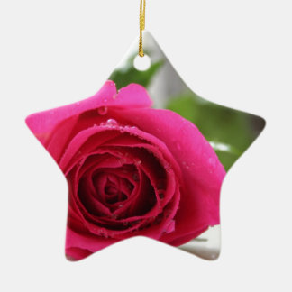 Pink Rose Christmas Ornament