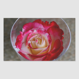 Pink Rose Closeup In Wine Glass Rectangular Sticker