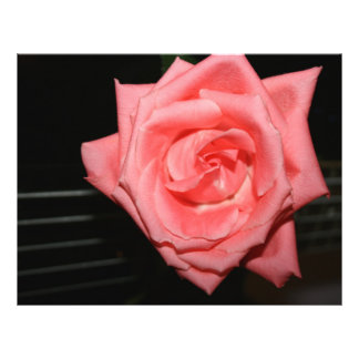 pink rose five string bass strings dark back music custom flyer