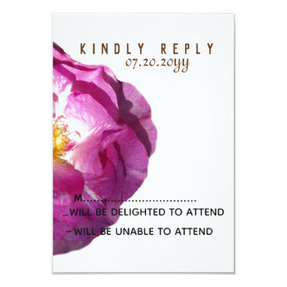 Pink Rose Flower  Blossom Photo Response Cards