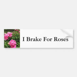 PINK ROSE - flower close up Car Bumper Sticker