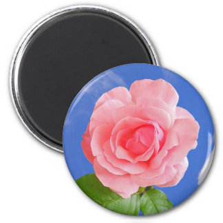 Pink Rose Flower Magnet