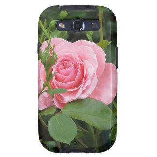 Pink rose flowers with water droplets in spring galaxy SIII cover