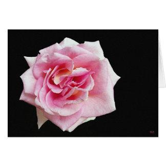 Pink Rose Greeting cards
