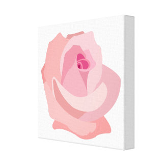 Pink Rose Illustration on White Canvas Print