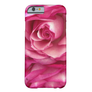 Pink Rose iPhone 6/6s Case