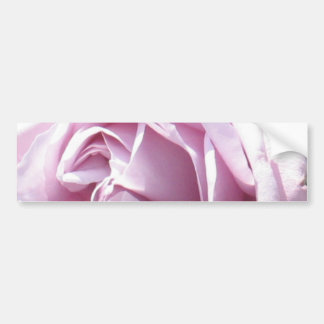 Pink rose macro photography bumper stickers