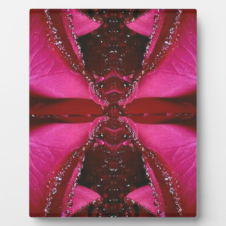Pink Rose n Honey Bee Sting - Background Pattern Plaque