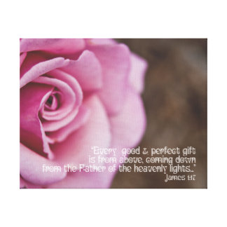 """Pink Rose on Canvas Scripture James 1:17 10"""" x 8"""" Gallery Wrap Canvas"""