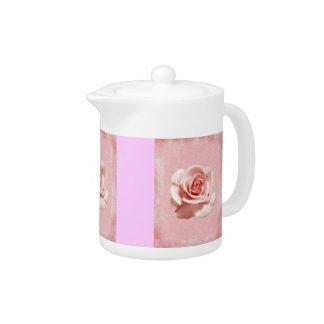 Pink Rose on Pink