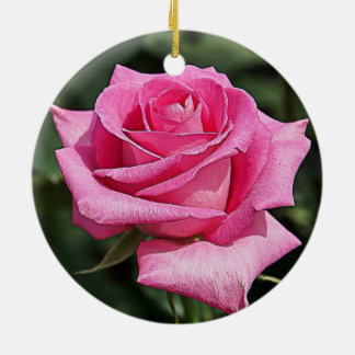 Pink Rose - Ornament