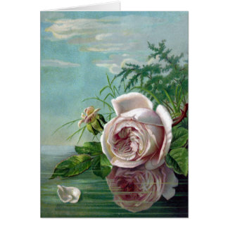 Pink Rose Over Water Card